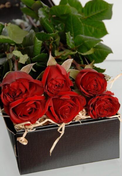 St Valentines flowers - red roses box