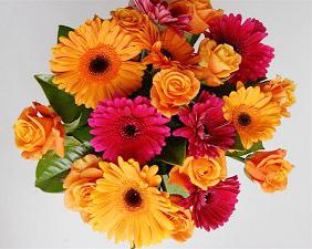 celebration flowers - ab fab